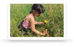 pedagogie-environnement-apaisant-ecole-decouverte