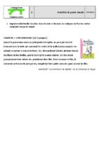 Conj_Ceinture-verte_A_Valid1
