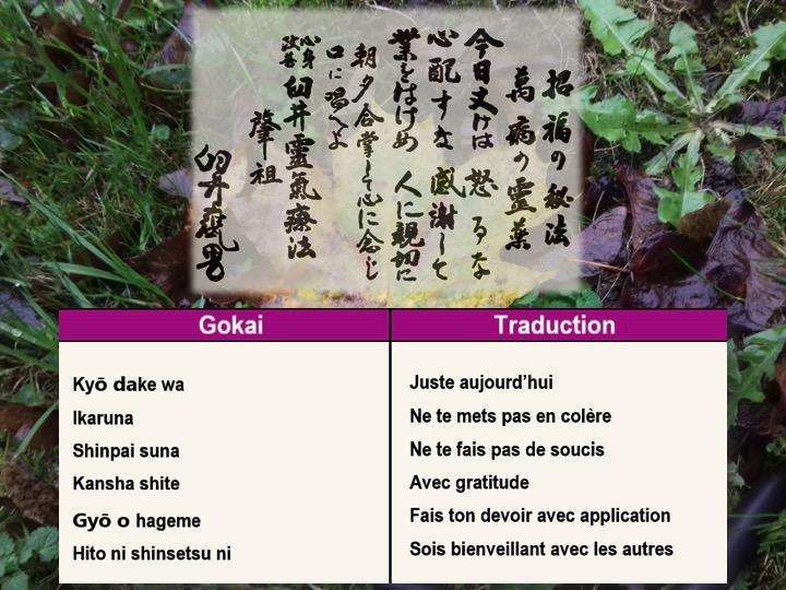 Gokai texte + kangi