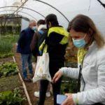 St Jo Formation Jardinage au naturel pour l'équipe enseignante