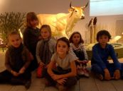 Ecole Saint Pierre - muséum d'Histoire Naturelle
