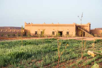 Organic farm at Ecolodge lile de Ouarzazate