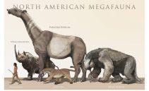 cropped-megafauna-of-north-america1.jpg