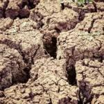 image: desertification