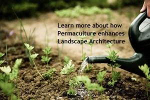 image: how permaculture enhances landscape architecture