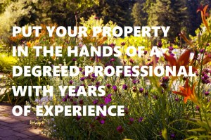 image: residential landscapers with professional knowledge & skills