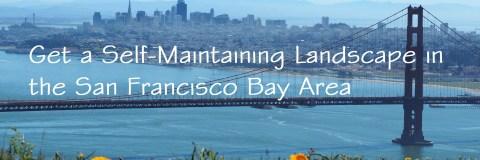 image: Landscape Design Services in San Francisco