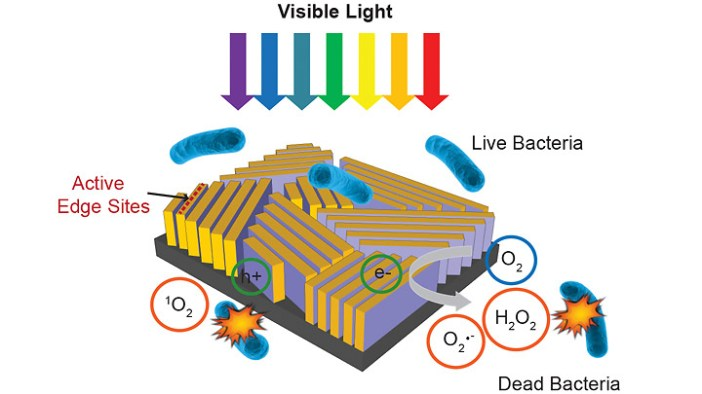 Gadget solar desinfeccion agua