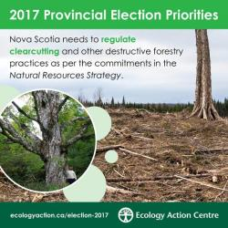 regulate clearcutting