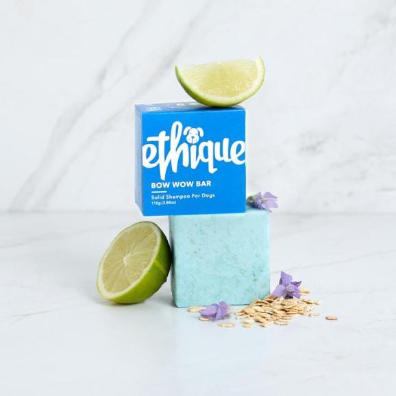 Ethique shampoo 1