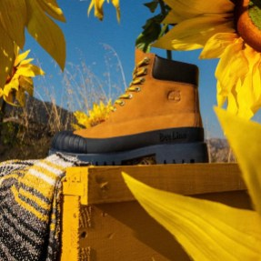 bee-line-billionaire-boys-club-timberland-8