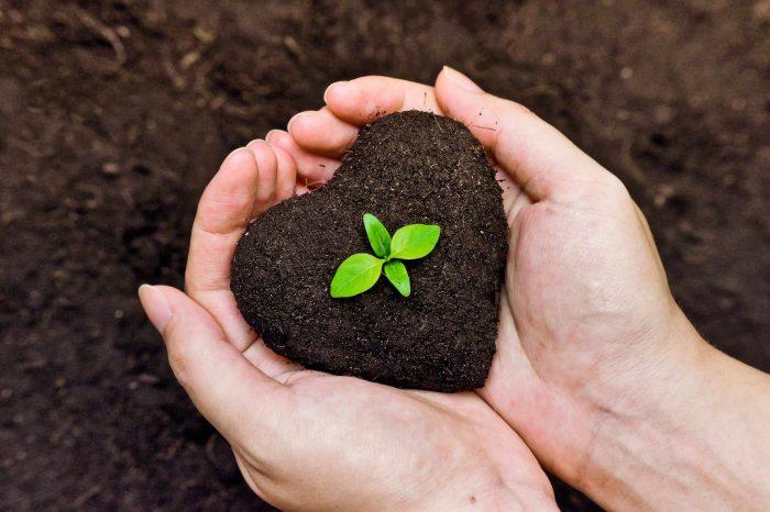 """""""Greenwashing"""": una mala práctica, en la que tu empresa nunca debe caer"""