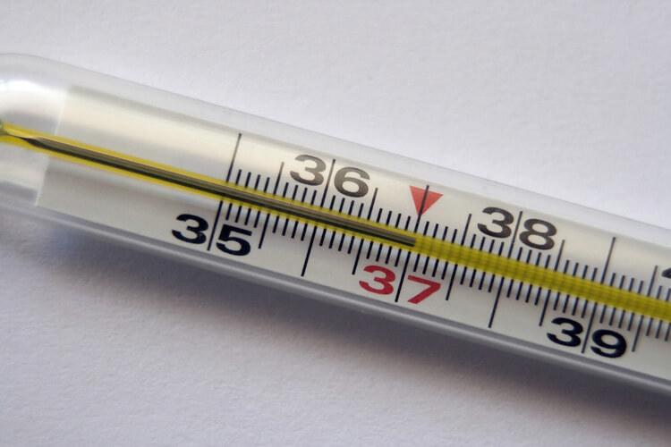 Teplota subfebrilu: Proč je teplota 37