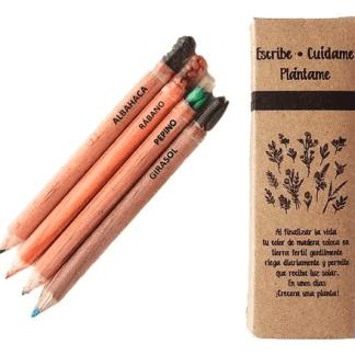 Colores de madera con semillas
