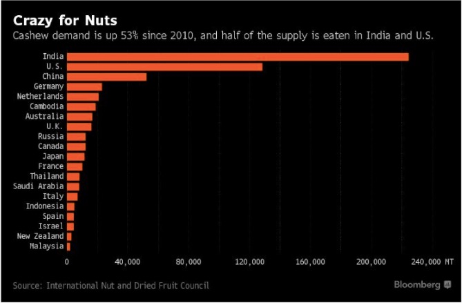 cashew globalization
