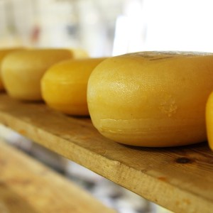 Weekly Economic News Roundup and cheese glut
