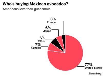 avocado shortage