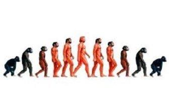 Un balance epistemológico relacionado con la segunda ley de la termodinámica. El hombre comienza a descender de su pedestal.