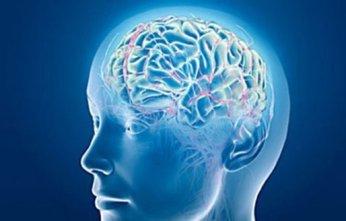 acandas-evolución-consciencia