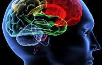 Ciencia Cognitiva-3