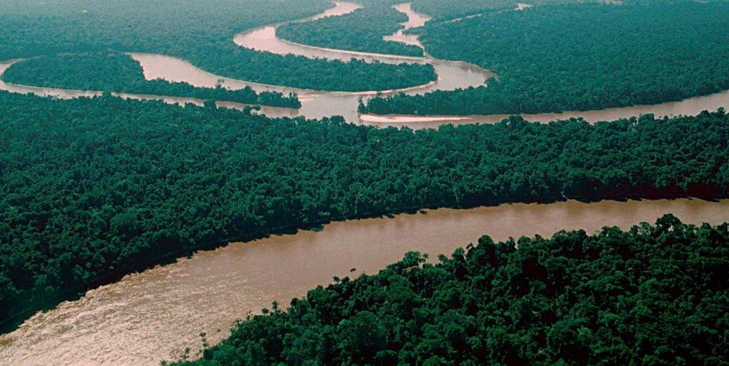 835333-rio-amazonas-selva-brasil