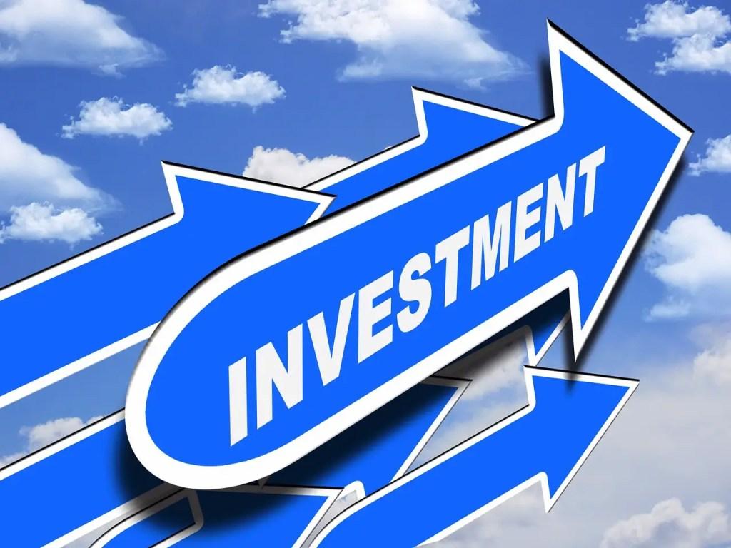 invest, money plant, investment