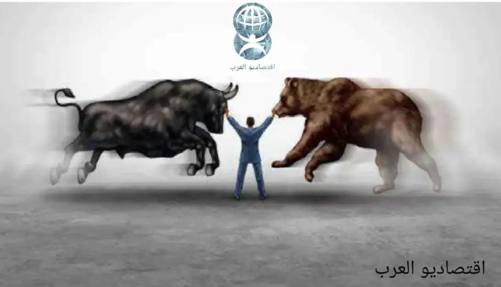 الثور والدب: وحوش الأسواق المالية