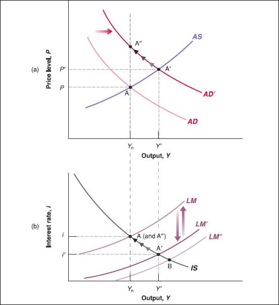 asad-model-example