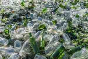 glass bottle recycling center in oceanside