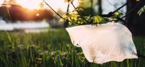 5 maneras de reducir el uso de plástico