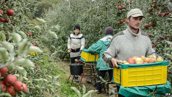Les représentants polonais à l'UE souhaite changer l'orientation agricole de leur pays