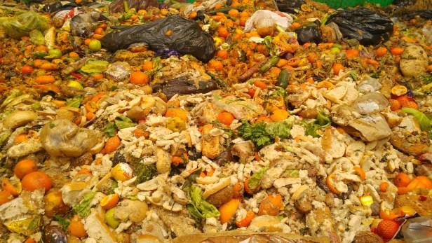 Les ménages d'une seule personne sont les plus gros producteurs de déchets alimentaires