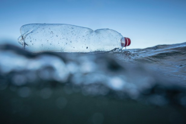 La Commission européenne propose d'interdire les plastiques à usage unique et d'imposer aux fabricants la charge de nettoyer les déchets, dans le but de réduire le nombre de déchets marins dans le monde.