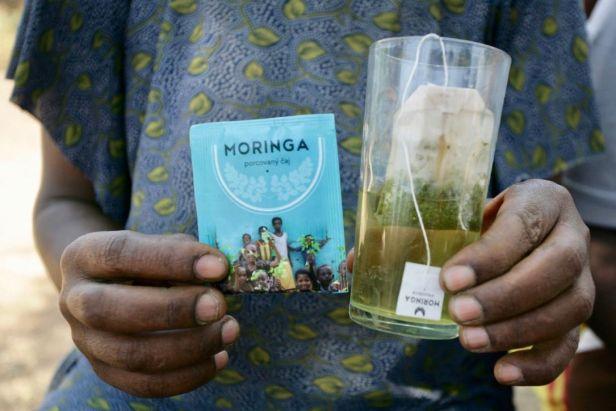etiopie_moringa2