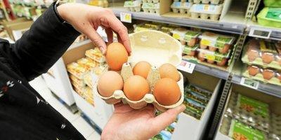 Les prix des œufs en Ukraine ont presque diminué de moitié en valeur l'année dernière