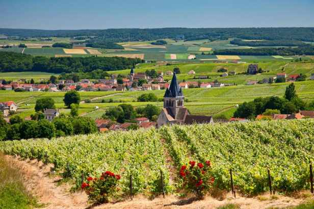 your-france-village-champagne-ALAMY-TRAVEL-xlarge