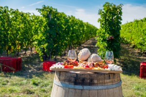 La Roumanie affiche non seulement des performances médiocres en tant qu'exportateur de vin, mais est également un importateur net de vin ces dernières années.