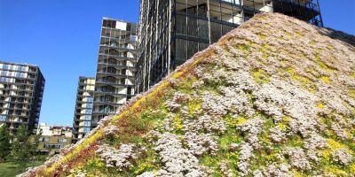 Pavel Dostál, de l'association des architectes paysagistes, a déclaré au quotidien que le nombre de toits couverts de végétation en République tchèque ne cessait d'augmenter, mais leur nombre est encore très faible par rapport aux autres pays européens.