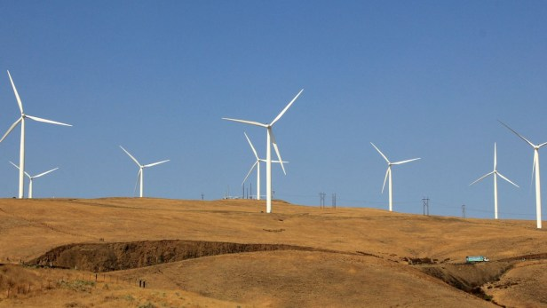 La quasi-totalité des centrales éoliennes et solaires de Russie sont actuellement conçues par des sociétés étrangères de Chine, d'Italie, de Finlande et d'Allemagne.