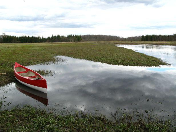 1200px-Raudna_jõgi-masterplaan-2008