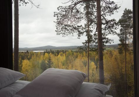 Swedish Treehotel-pillows_view