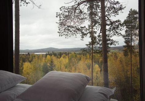 Swedish Treehotel-pillows_view