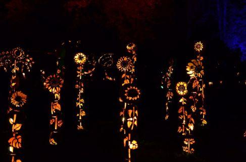 New York Hudson Historic Valley-Jack o Lantern Blaze-1 - 1024 x 678