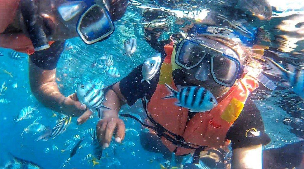 Malaysia Tioman Island snorkeling