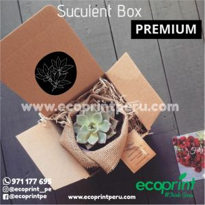box caja con suculentas regalo personalizado regalos premium corporativo ecoprint peru lima