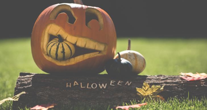6 Sustainable Ways To Celebrate This Halloween