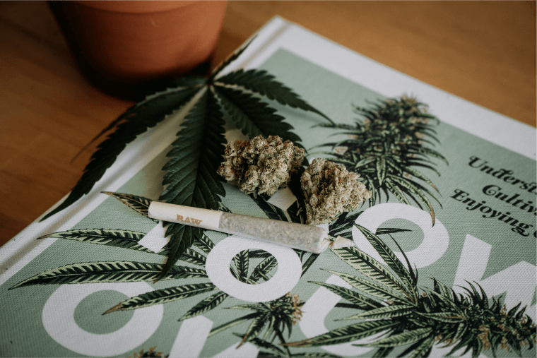 Virtual Cannabis Conferences To Attend In 2021