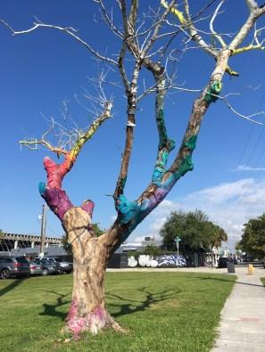 Tree outside of Mana