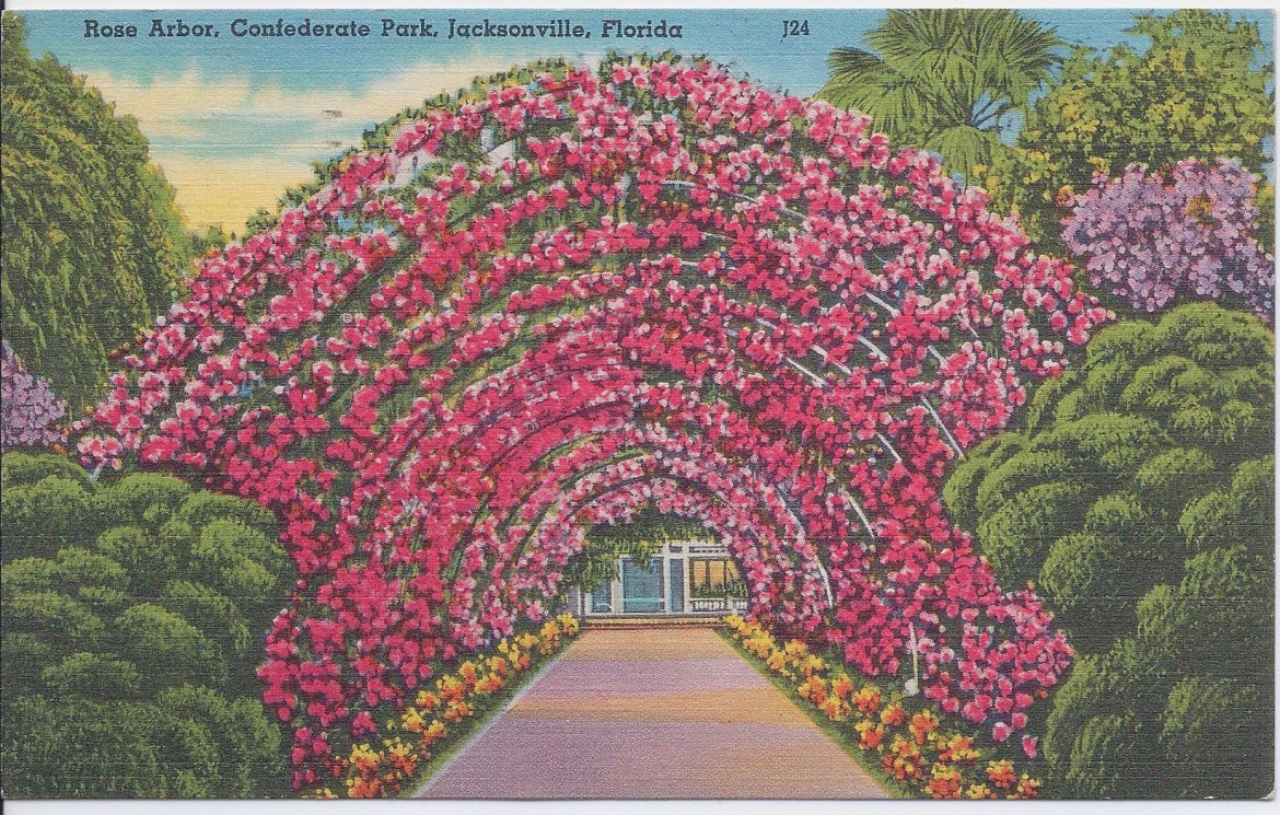 Postcard Confederate Park Rose Arbor Postdated 1954