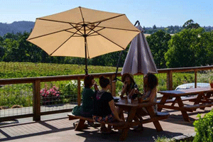 Russian River Vineyards shady table